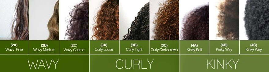 source: http://www.rightringlets.com/2014/12/know-your-hair-type/